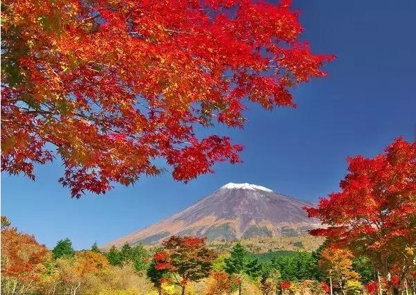 日本拟推新签证刺激房产市场发展 -异乡好居