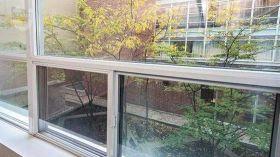 多伦多大学附近优质一室公寓