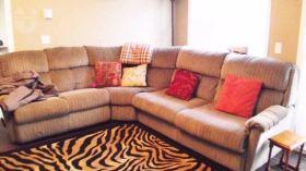 卡尔加里大学附近舒适一室公寓
