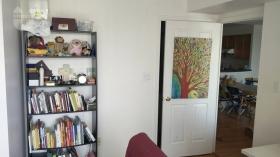 多伦多约克大学附近一卧室公寓合租