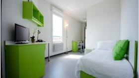 里昂6区Cardinalcampus-Arts Campus公寓