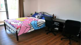 公寓单人间近新南威尔士大学7月入住