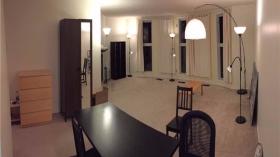 蒙特利尔优质两室公寓