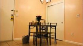 【波士顿租房】2B2B高档公寓 近地铁站 9.1入住
