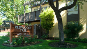 Redwood Tree Apartments
