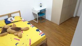 两室两卫公寓近新加坡管理大学立即入住