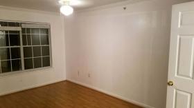 奥斯汀大学附近全新装修公寓