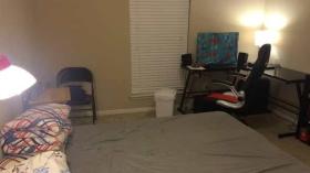休斯顿莱斯大学附近单间卧室出租