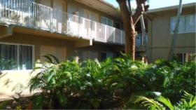 迈阿密高档公寓出租