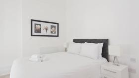 1室宽敞精美公寓靠近市中心及大学