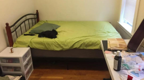 波士顿近NEU,近绿线,交通便利,饮食方便,2室1卫,$2600/月,可养宠物