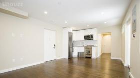 曼哈顿下城三卧两浴室空间超大可住3到4人
