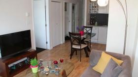 温哥华市中心带家具一居室公寓出租