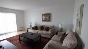 多伦多一居室公寓出租
