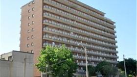 汉密尔顿 宽敞两室公寓出租
