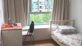 实龙岗高级公寓两个普通间近汉合国际学校立即入住