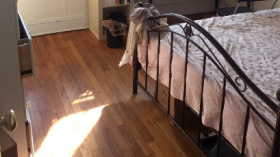 波士顿NEU内部,近绿线橙线,交通便利,2室无厅1卫,人均$1400/月,可养猫