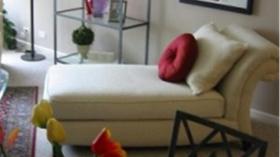 埃文斯顿豪华公寓1501 Maple Ave 1b1b超大客厅转租(男女不限)