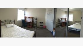 悉尼|Maroubra 中心地段公寓主卧出租 2月19日起入住